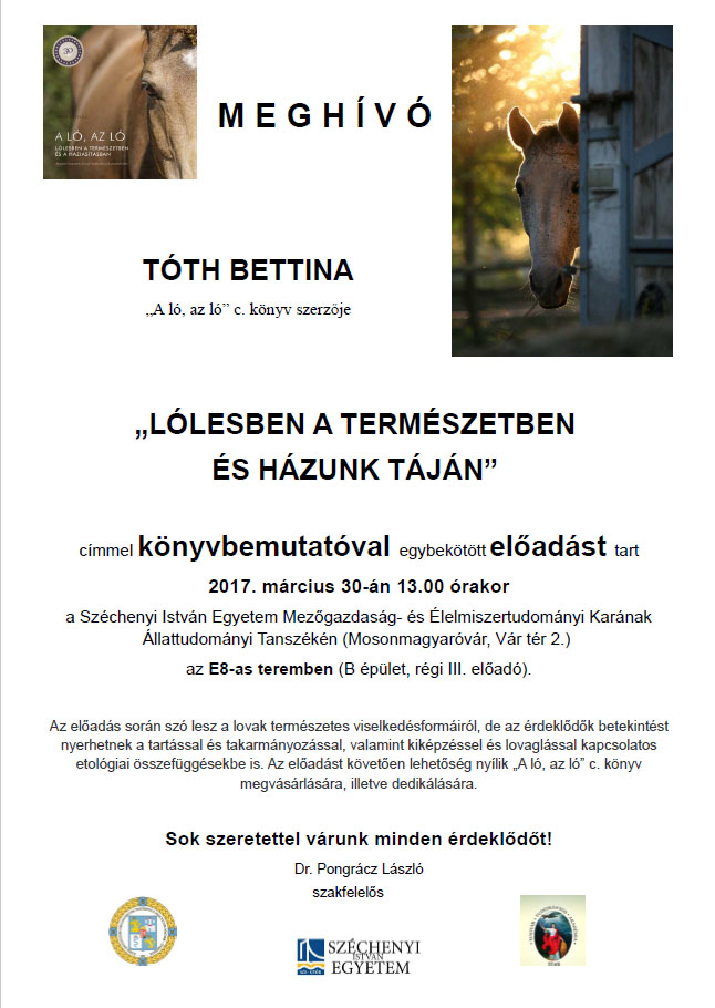 Tóth Bettina: