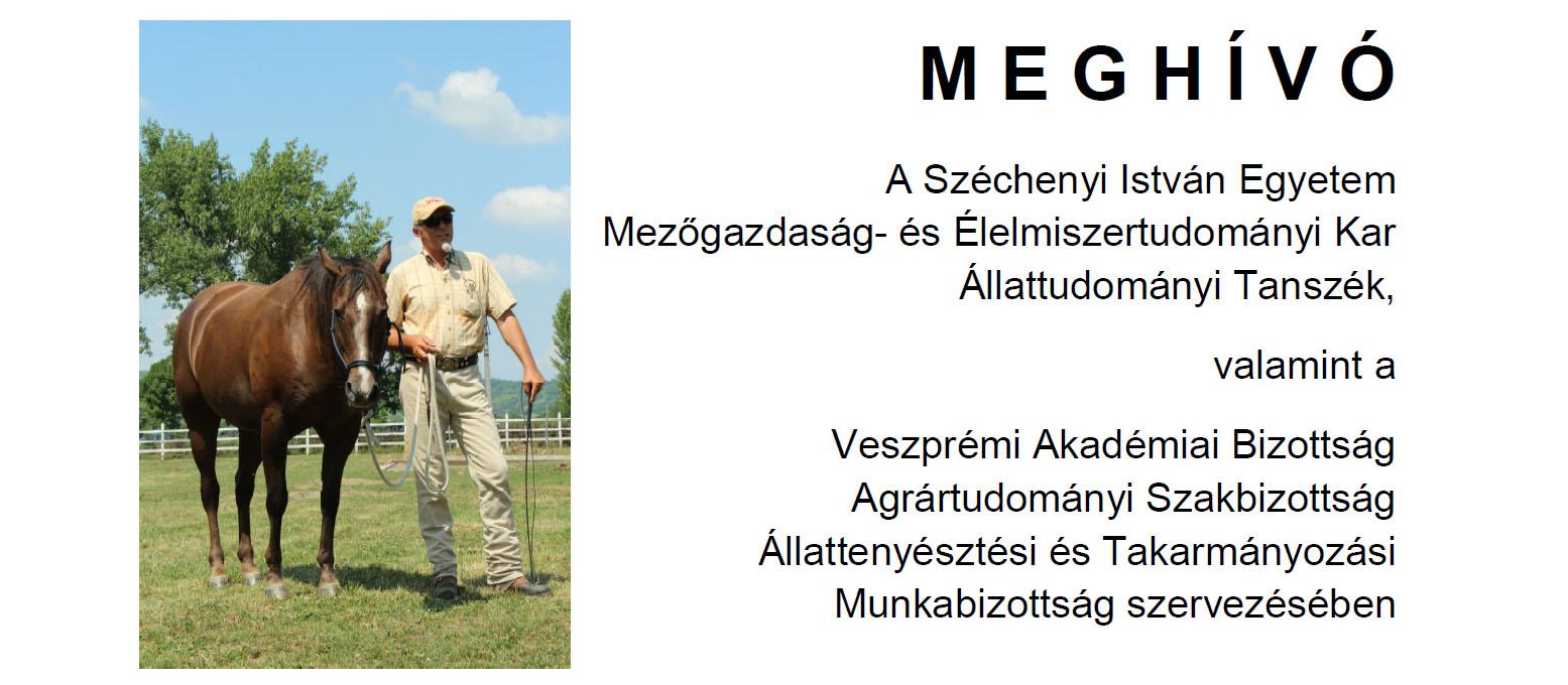 Szabadidős lovas tevékenységek Magyarországon és külföldön