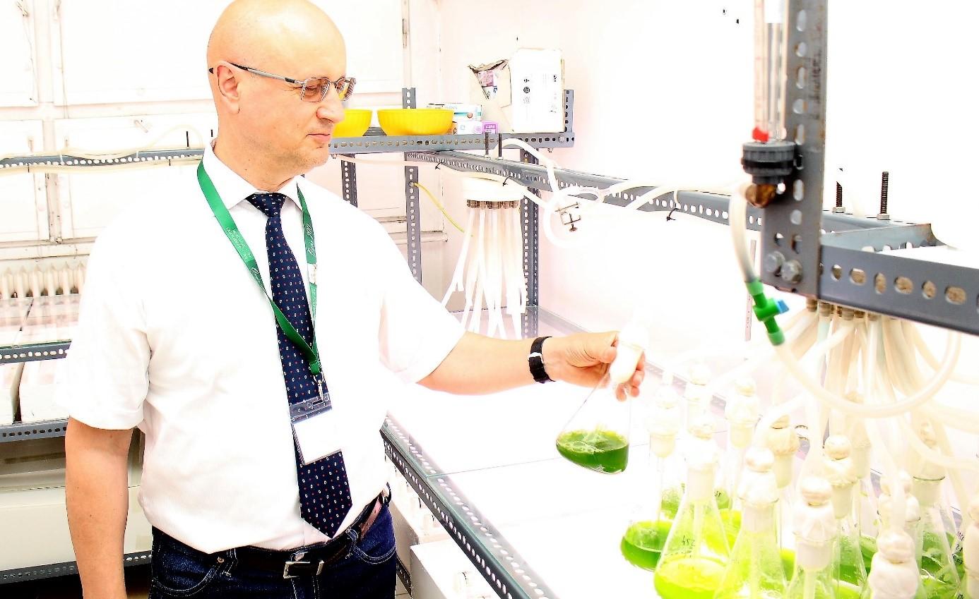 Mikroalga hadsereggel védik a haszonnövényeket